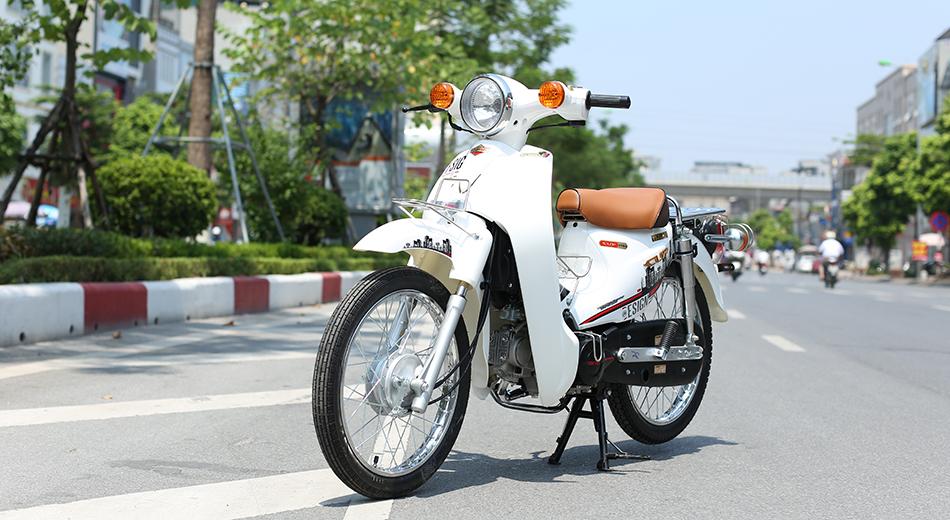 Xe Cub 81 Indo