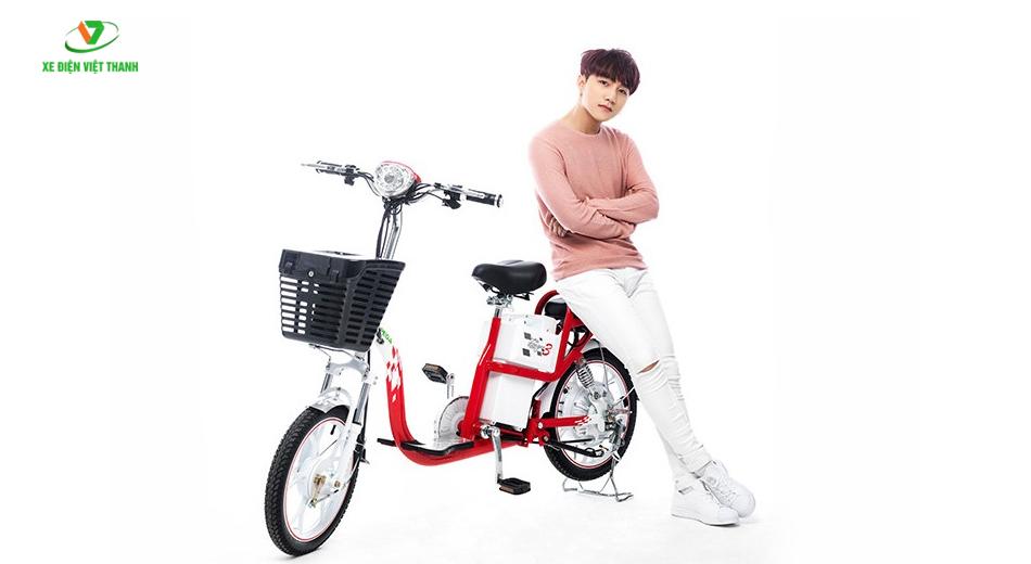 xe đạp điện Zinger 9