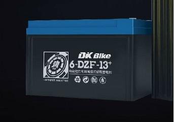 ắc quy xe đạp điện DK Bike 48V - 13+Ah