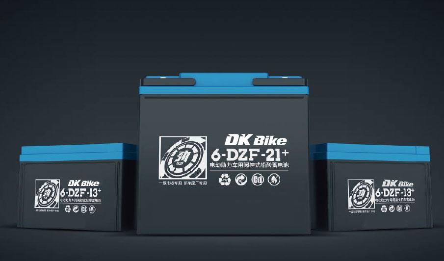 ắc quy xe máy điện DK Bike 60V - 21+Ah